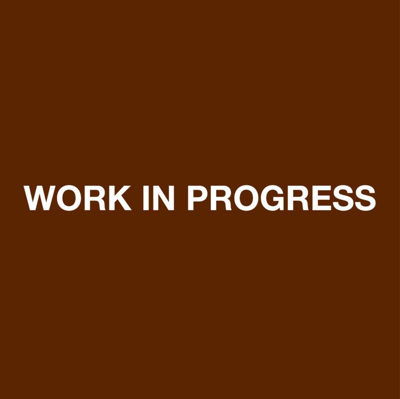 WORK IN PROGRESS- marrone